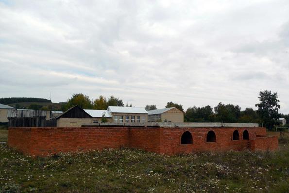 Храм преподобномученицы Великой княгини Елисаветы, село Красный Бор